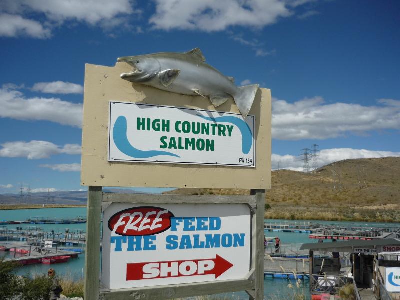 Salmonfarm_2