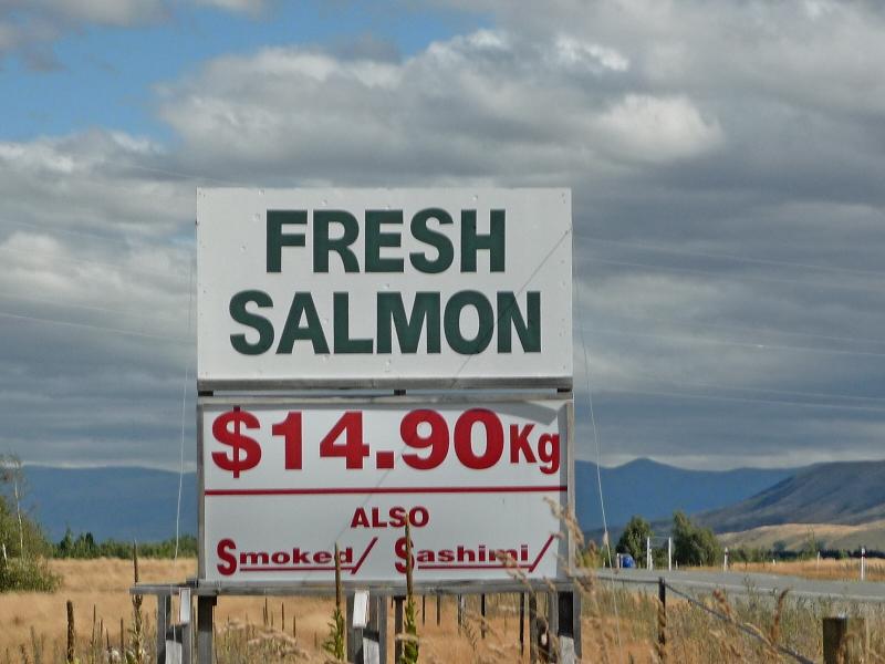 Salmonfarm_7