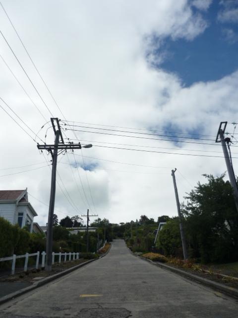 Dunedin_4